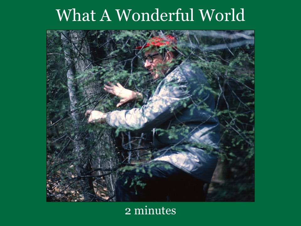 What A Wonderful World sung by Louis Armstrong with images from Jackson Hole Wyoming